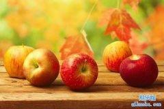 什么是苹果期货_苹果期货一手多少钱_做一手苹果期货手续费多少钱?