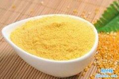 玉米淀粉期货交易时间是什么时候-玉米淀粉期货有夜盘吗?