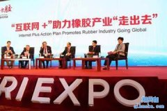 2018中国橡胶投资策略交流会-重磅大咖来袭-7月8日-北京站