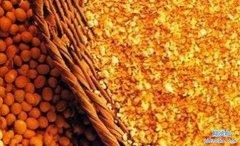 <b>豆粕期货一手保证金多少钱_豆粕期货保证金怎么收取的?</b>