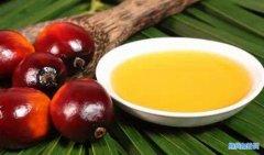 <b>一手棕榈油期货手续费多少钱?最便宜的棕榈油手续费!</b>